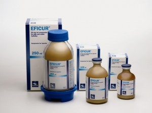 EFICUR 50 mg/ml injekcinė suspensija