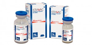 ERAVAC injekcinė emulsija triušiams